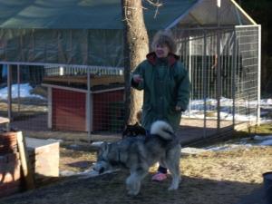Irja mummu ja koirat