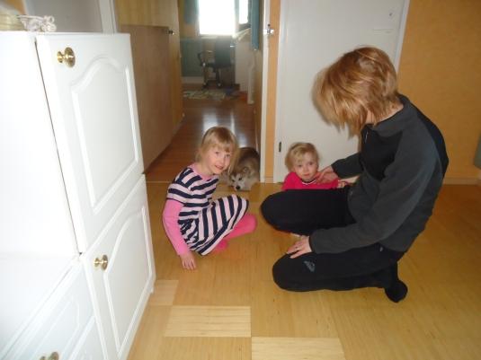 Ellen, Alisa ja ELina odottavat milloin pentu uskaltaa tulla tutustumaan :)