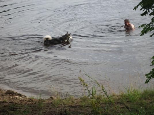 yhdessä ui